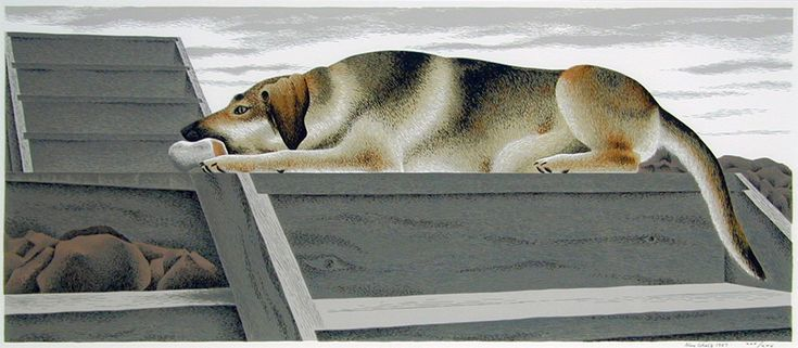 ALEX COLVILLE: Le Chien d'Or