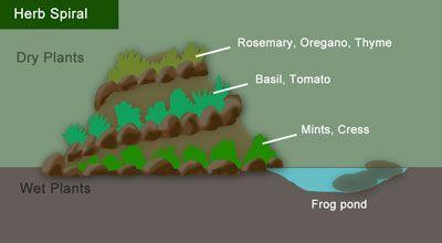 How to Build a Herb Spiral Garden :: Hometalk