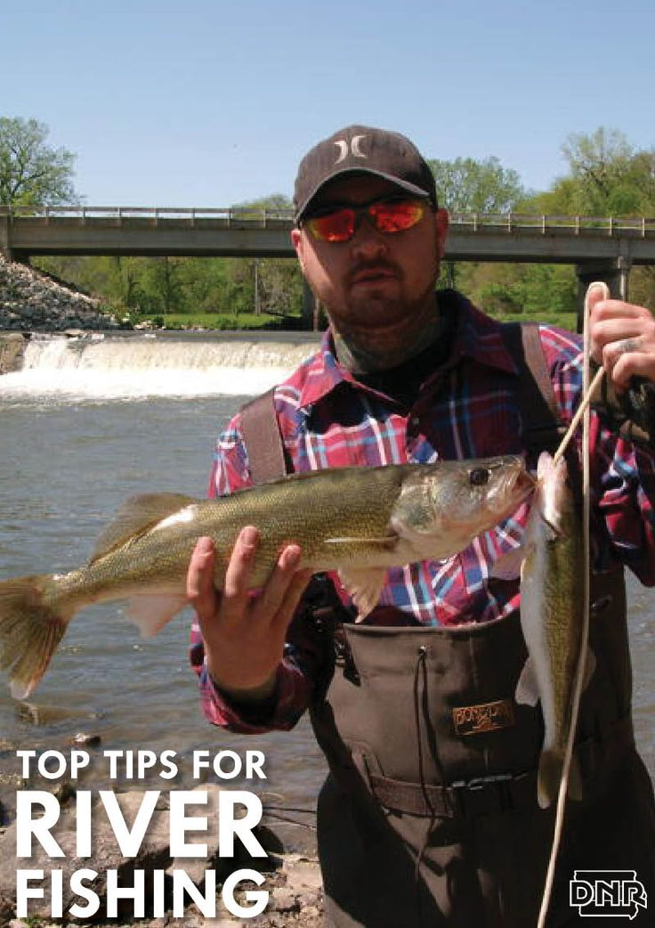 1000 images about iowa fishing on pinterest lakes bass for Iowa fishing lakes