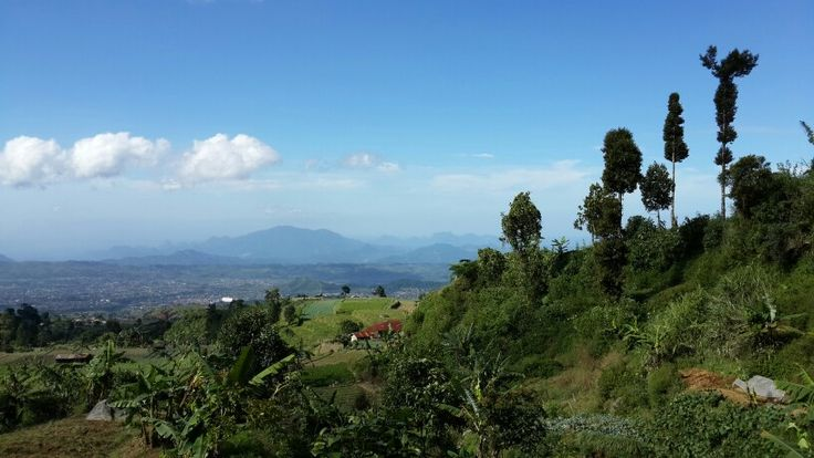 View of Cibodas, Gunung Putri, from the feet of Mount Gede, West Java #visitIndonesia