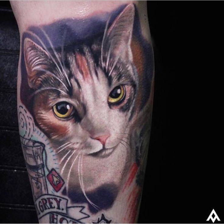 24 best images about cat portrait tattoo ideas on for Bad cat tattoo
