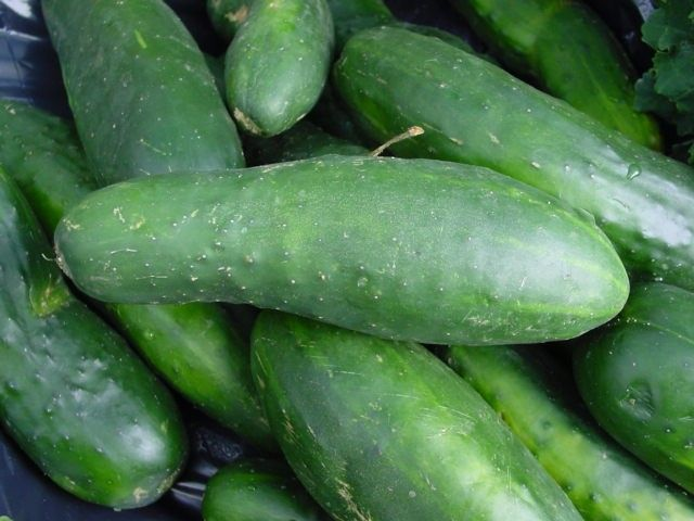 Homestead Survival: The Cucumber Recipe File, tons of ways to use all those cucumbersHomemade Beautiful Recipe, Benefits Of, Salad Recipes, Health Benefits, Cucumber Salad, Drinks, Face Masks, Homesteads Survival, Healthy Juice