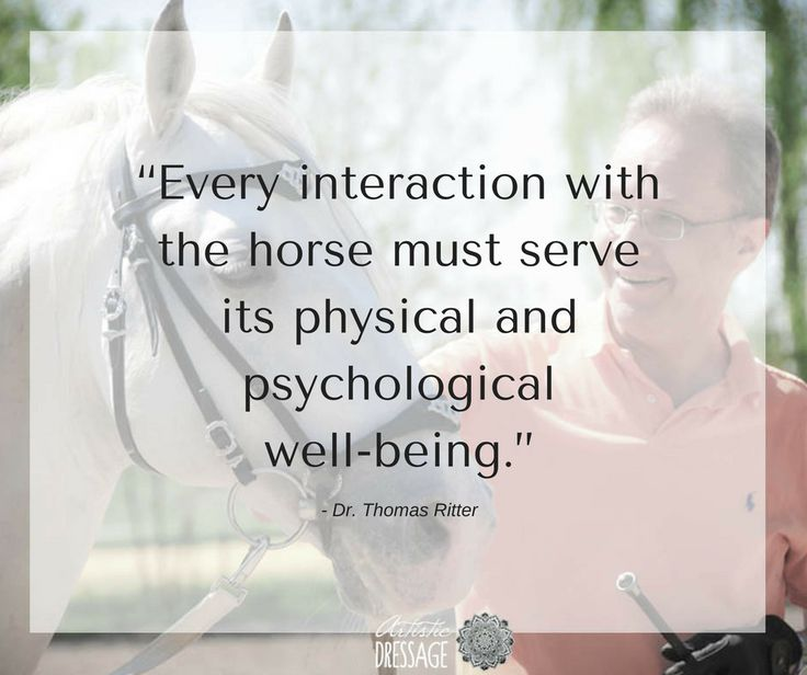 """Every interaction with the horse must serve its physical and psychological well-being."" - Thomas Ritter  artisticdressage.com"