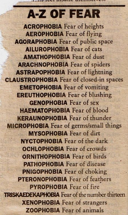 I'm extremely claustrophobic and also have arachnophobia. I'm terrified of spiders!
