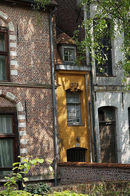 Lille, immeubles cachés derrière Notre Dame de la Treille.