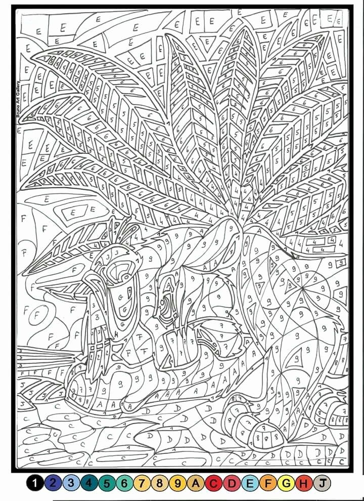 Coloring By Numbers For Adults