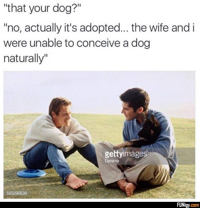 """that your dog?"" ""no, actually it's adopted... ... - #actually #adopted #conceive #naturally #unable #were #wife"