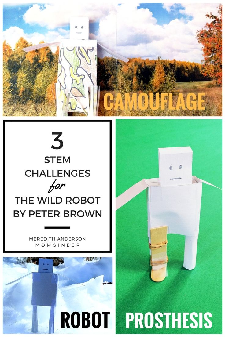 Integrate STEM and literacy with these hands-on challenges for The Wild Robot! Your kids will feel like they are in the story as they follow Roz on her adventures. | Meredith Anderson - Momgineer
