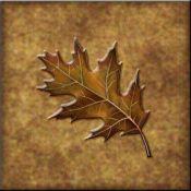 DM-Lodge Oak Leaf 4 - Accent Tile