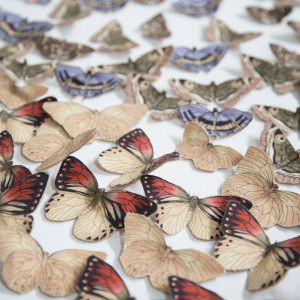 These butterfly embellishments are perfect for any spring or summer craft.