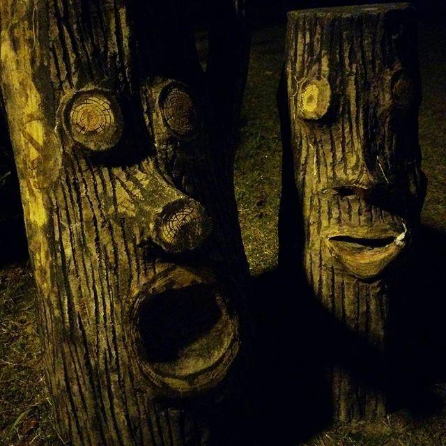 【tanaka.yusaku】さんのInstagramをピンしています。 《夜の森を歩くと…Night life in forests. #夜の森 #木霊 #精霊 #木の会話 #森 #内緒話 #night #forest #nightlife #conversation #splits #fairy #fairytail》
