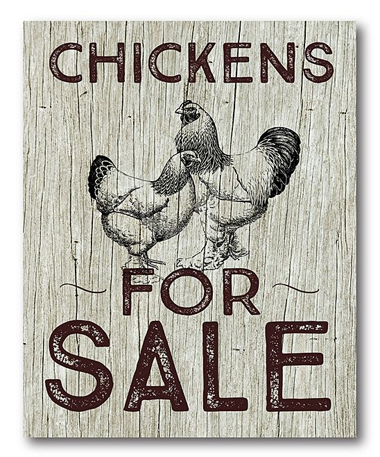 'Chickens for Sale' Wrapped Canvas