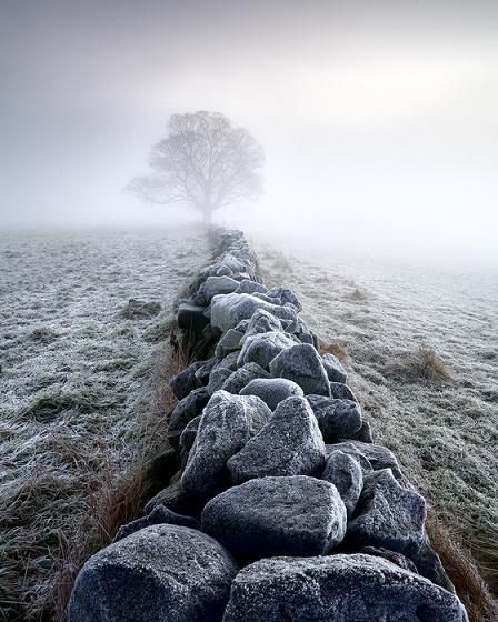 Stonewall FrostBeauteous Photography, Foggy Landscapes, Stones Wall, Beautiful, Dennings Weg, Stones Paths, Dir Stein, Wahre Wort, Denkwürdig Sprüche