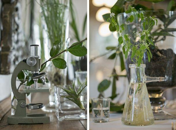 Botanical Romance Eben Haezer Wedding by Lizelle Lotter {Jeanne & Neal} | SouthBound Bride