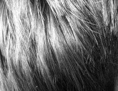Si vous constatez que votre cuir chevelu est régulièrement irrité, rouge, qu'il démange ou tire et qu'en plus vous avez des petites pellicules blanches, alors ces astuces sont pour vous ! Par contr...