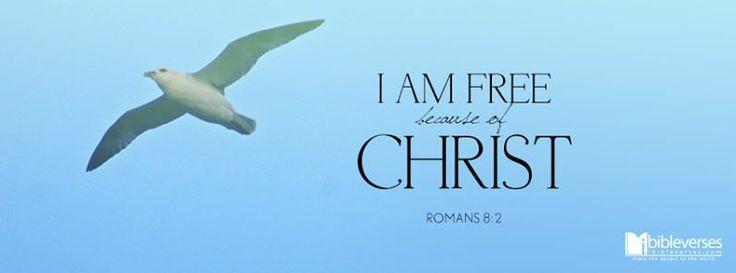 Romans 8:2   https://www.facebook.com/photo.php?fbid=653079041411991