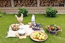 Zobacz zdjęcie dekoracje ogrodowe, piknik, misy na owoce, ceramiczne wazony, kosze wiklinowe...