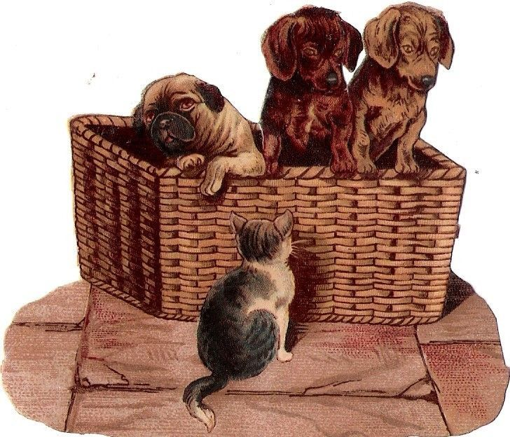 Oblaten Glanzbild scrap die cut chromo  Katze cat  Hund dog  Mops Dackel Teckel