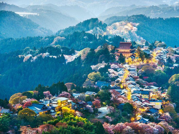 606 Best Images About Nature Adventures On Pinterest Wakayama Okinawa And Tottori
