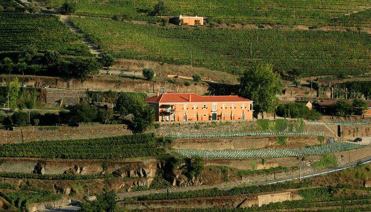 Quinta do vallado estate wine rural hotel douro valley - Quinta do vallado ...