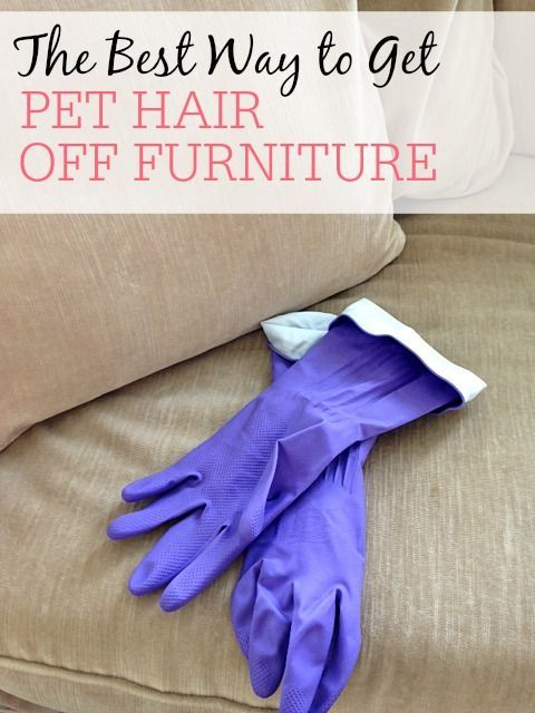 Tired of pet hair on all of your furniture? Check out the best way to get pet hair off furniture. It is so easy and only takes a minute.