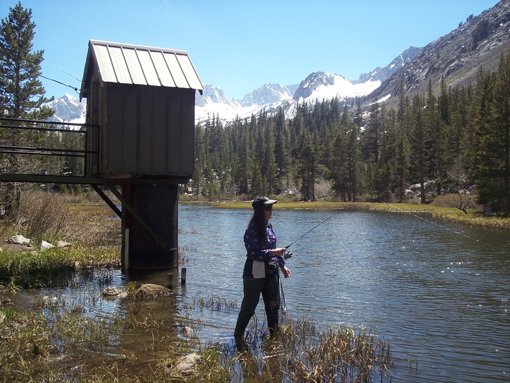 117 best images about high sierras on pinterest resorts for Bishop creek fishing