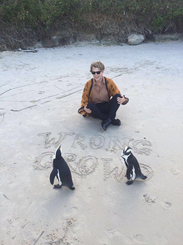 Penguins and Tom ~ two of my favourite things!