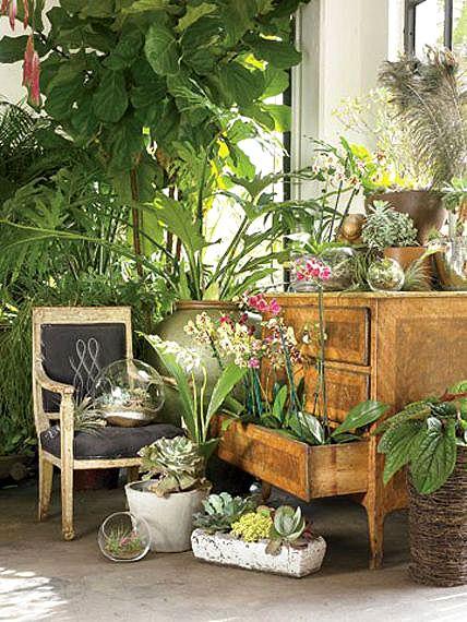 Les 25 meilleures idées de la catégorie Jardin d\'hiver sur ...