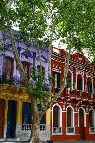 The painted houses of Reus. Reus is a neighborhood in Montevideo, Uruquay, where the houses are all painted different colors.
