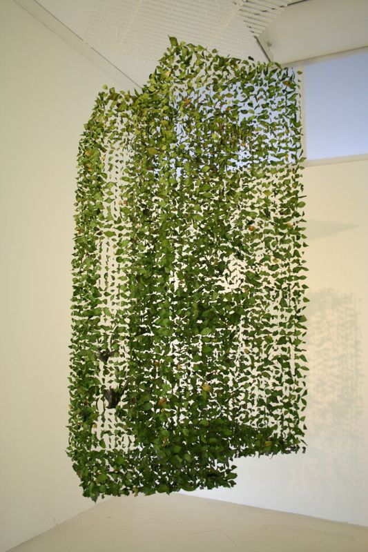 Claire Morgan - Garden                                        0.8m x 0.8m x 2.2m (h) from ceiling  Two taxidermy Dunnocks, privet leaves, lead, nylon, acrylic  Exhibited at Tracing Reality, Galerie Kashya Hildebrand, Zurich