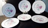 6 Eschenbach Bavarian Baronet Transferware Dinner Plates Barbara Pattern Germany