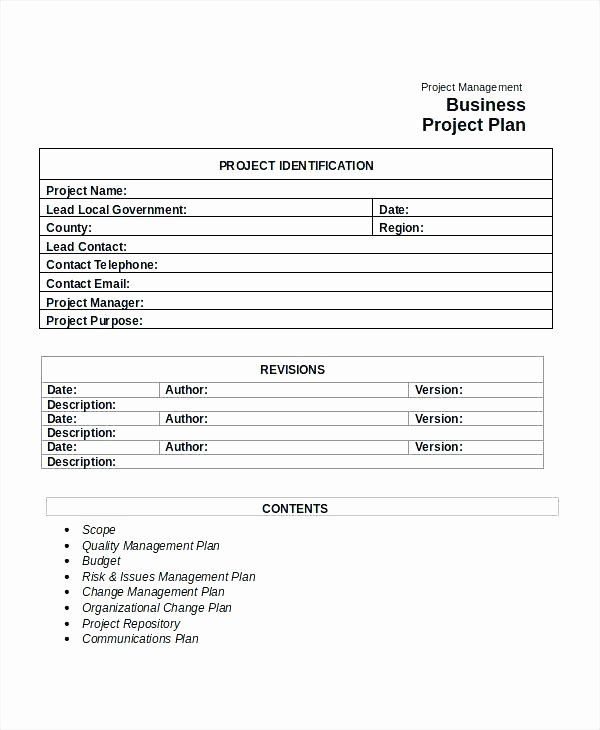 Risk Management Plan Template Pdf Best Of Sample Project
