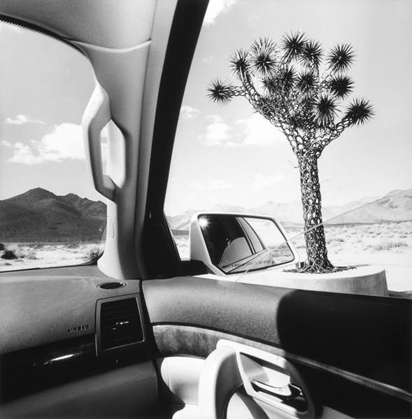 Lee Friedlander, California, 2008, from the series America by Car, 1995-2009.