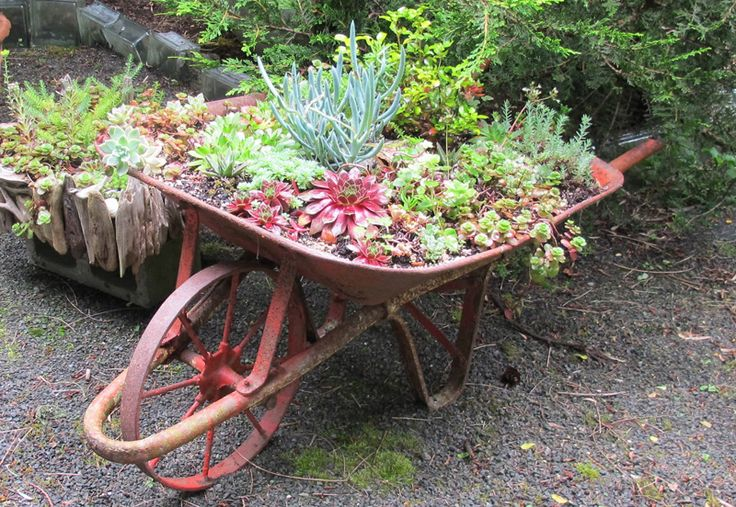 maysdream wheelbarrow 1 of 25 wheelbarrow planter ideas
