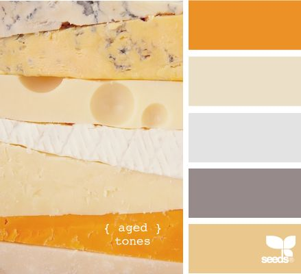 aged tones. i had to pin this on principle alone because cheese is food of the gods. but that cheddar shade is one of my favorite yellows. and i think it goes perfectly with the grey.