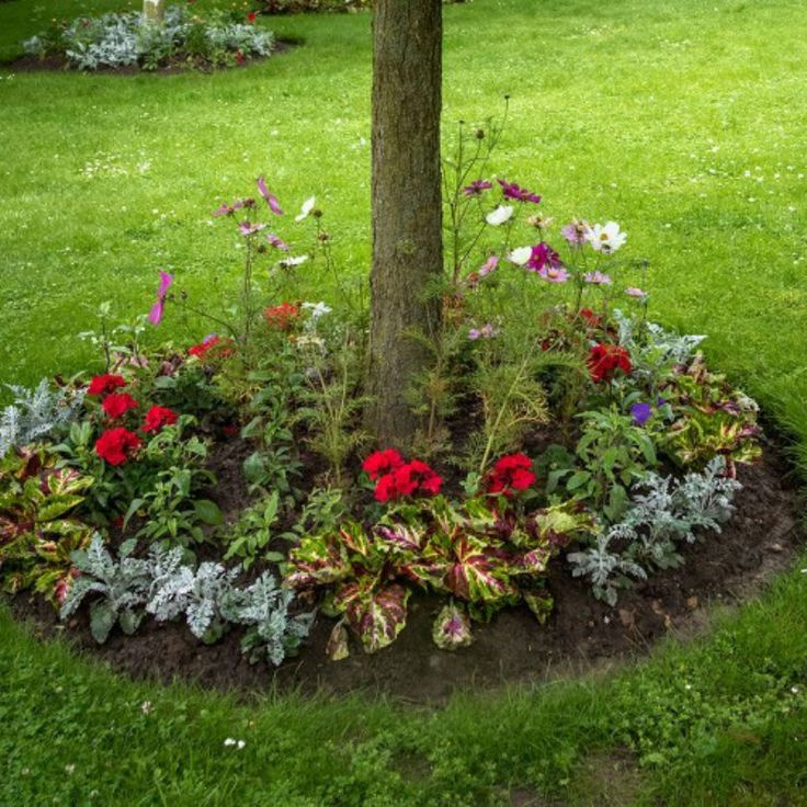 Gardening Products 4 Less Tree Ring Roll Out Flower Mat