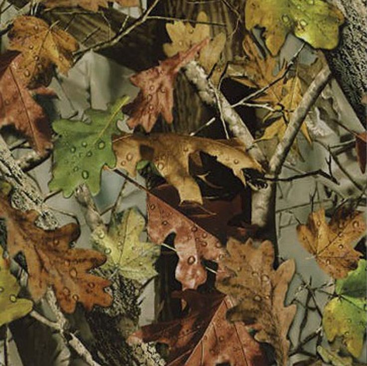 Hydrographics FILM REFILL Fall Leaves Camo Hydro dipping FILM HC-243 #mydipkitmydipkitFILMREFILLHC243