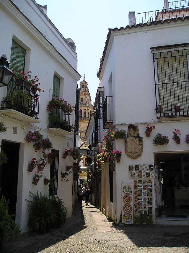 Mezquita de Córdoba - Petite rue des fleurs - Tour de la Grande Mosquée