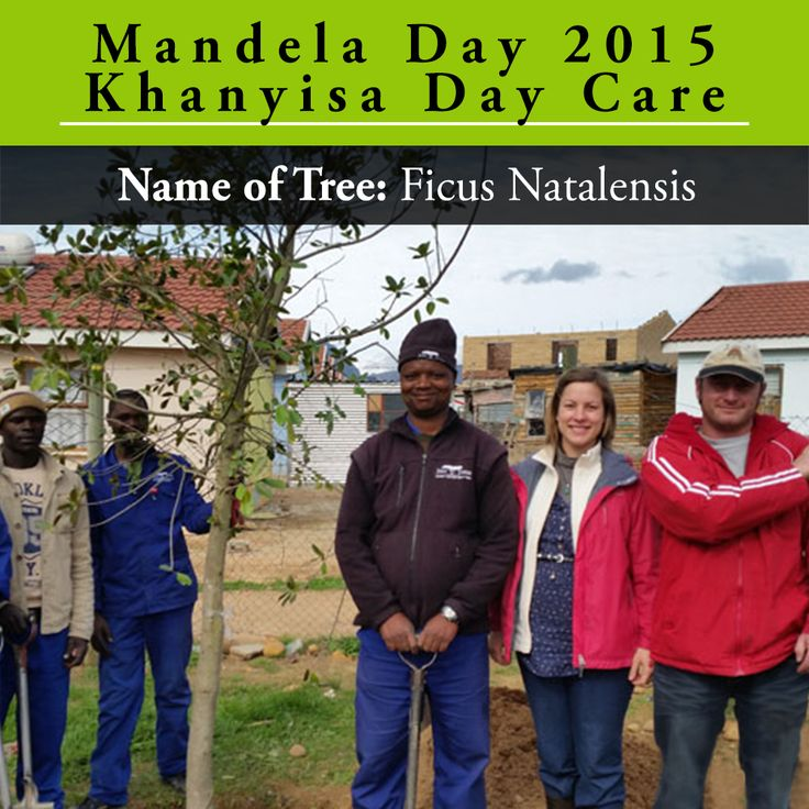 We're throwing it back to July 2015 when we visited Khanyisa Day Care Educare to donate and plant 6 x 40L Ficus natalensis on Mandela Day. We had a fantastic time with all involved in the project and enjoyed our lunch with the staff and children!See more pictures from the day at http://bit.ly/2uPi5sz.
