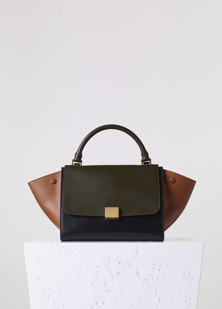 The One With Nuts for Bags on Pinterest | Balenciaga Bag, Celine ...