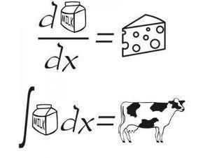 Calculus humor.  I know, but it's funny!