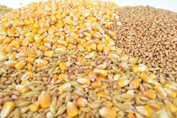 I 12 cereali integrali: li Conosci? Li Mangi? Ecco 7 Ricette per te. – Ricette di Cucina