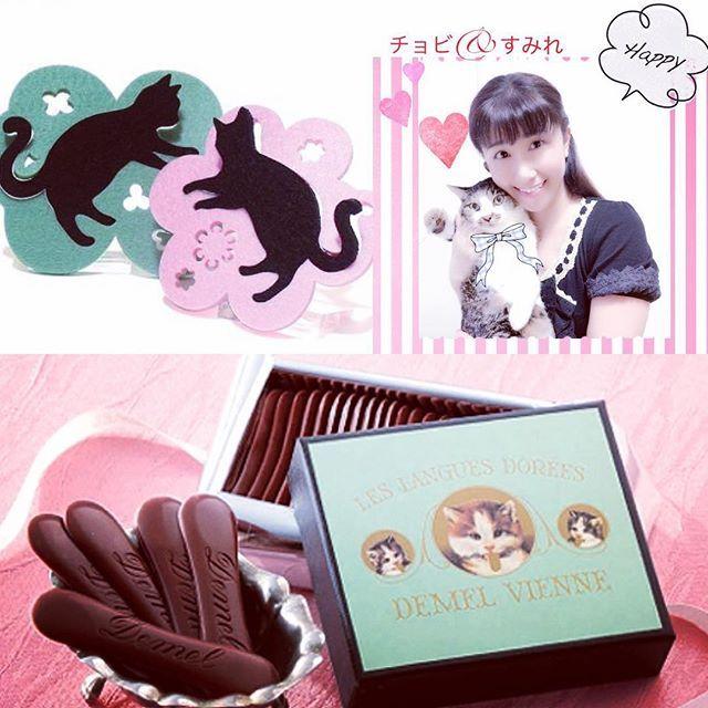 プレゼント🎁 デメルの猫の👅舌🐈 愛猫家の我が家🏠^ ^ではテンション上がりまくり⤴️😆✨✨ パッケージが可愛くて😺 猫舌のかたちをしたチョコ🍫がまさしく口溶けが良く本当に美味しいです👅 一度食べたら止まらない笑^ ^ ミルクチョコは癖になる味わい😆😋💕 とっても甘いのでブラックコーヒーを入れて☕️💭💕 お気に入りの猫のコースターでご至福の一時🕐😌💕 猫好きさんへのプレゼントにもお勧めです🎁😻 lineblog.me/@sumiremiyazaki716  #ねこ#ねこ部#ねこすたぐらむ#はちわれ#雑種#ミックス#愛猫#キジトラ#猫の舌#ティータイム#コースター#動物#オス#フォロー##インスタ映え#相互#gm#猫が好き