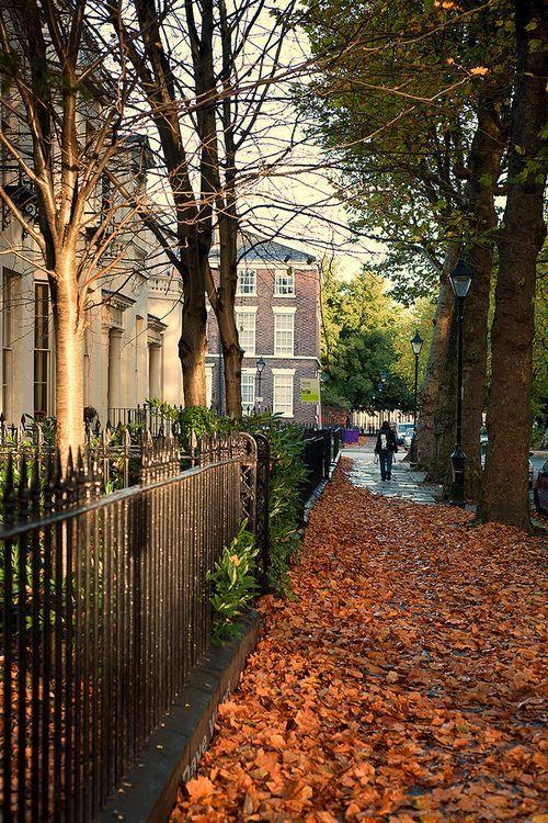 Leaf covered sidewalk in London