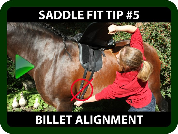 "Schleese Saddle Fit Tip #5 Billet Alignment  Ask yourself...  Does your saddle slide forward no matter what kind of girth or saddle pad you use?  If you answered ""yes"" to the above question, you may be faced with a saddle Billet Alignment issue. Watch this informative video and learn how to determine if your billets are correctly or incorrectly aligned.   https://youtu.be/Jcem7rEiJtE?list=PLA35A02DBF310BB9D"