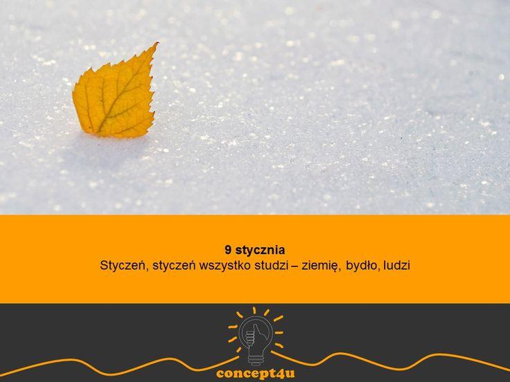 przysłowia polskie na miesiąc styczeń - concept4u