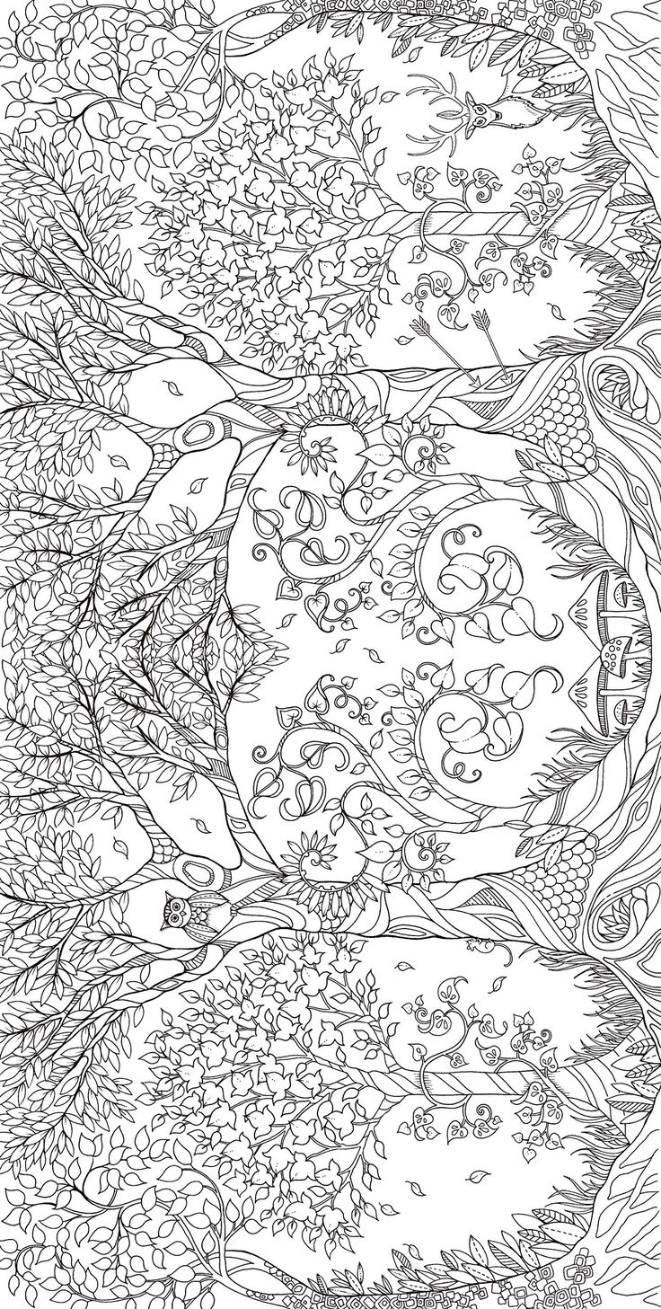 61 best coloring pages botanical u0026 floral images on pinterest