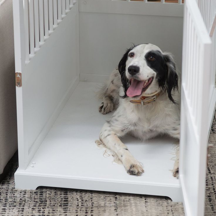 fancy dog crates furniture. the 25 best decorative dog crates ideas on pinterest animal room and crate cover fancy furniture r
