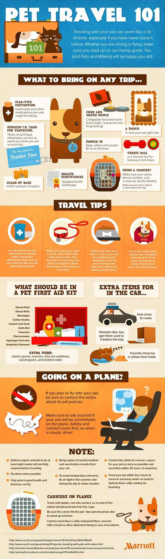Tips to Travel With Pets