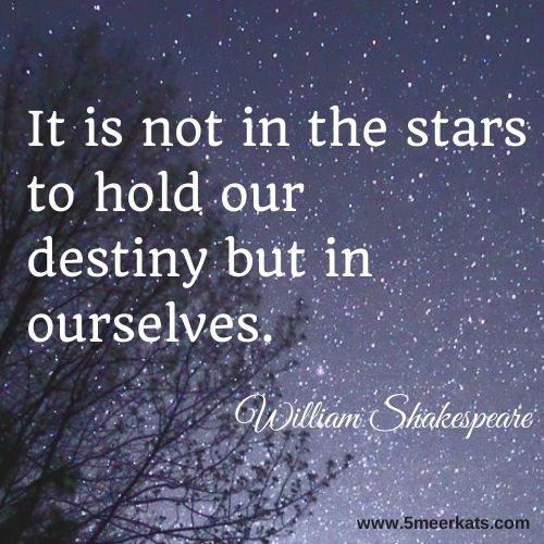 It is not in the stars to hold our  destiny. #shakespeare #destiny